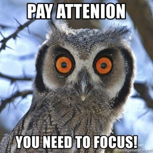Pay Attenion! You need to focus!