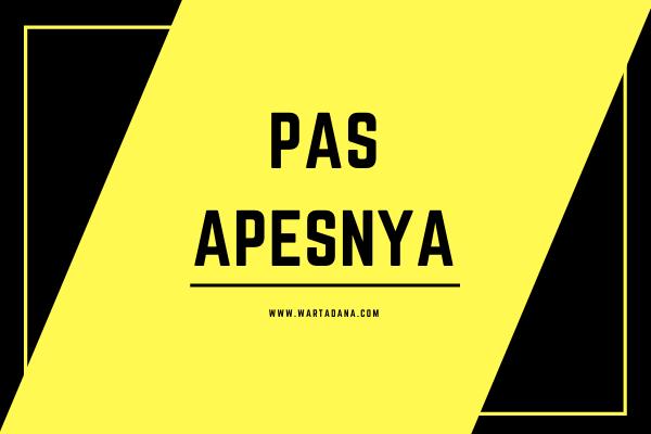 PAS APESNYA