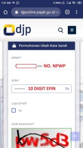 ISIAN LUPA PASSWORD DJP ONLINE