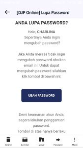 TOMBOL RESET PASSWORD DJP ONLINE